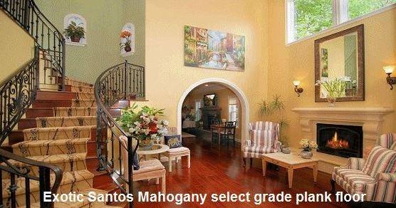 exotic-santos-mahongany-select-grade-plank-floor