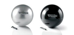 TechnoGym-stability-ball-300x143