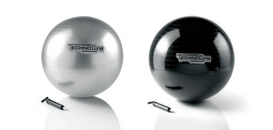 TechnoGym stability ball